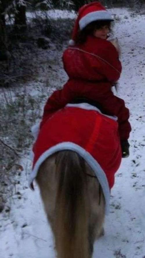 Julefeiring på Rosenlitunet