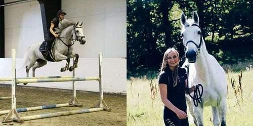 Hestesportdag
