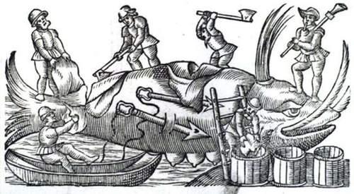 Hvalen og vikingene