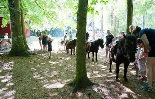 Hestens Dag