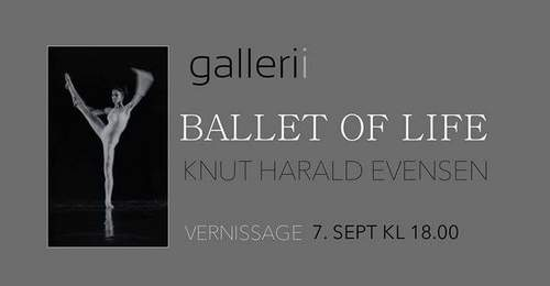 Vernissage - Ballet of life