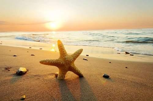 Velfortjent gratis sommerferie