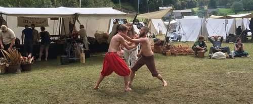 Vikingenes stridskunst