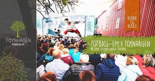 Fotball EM